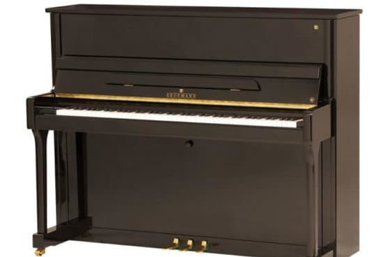 The Brodmann Piano – Unbelievable Masterpieces!